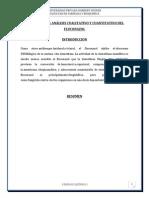 PRÁCTICA Nº04 FLUCONAZOL