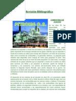 Revisión-Bibliográfica3_COMBAVIACION.docx
