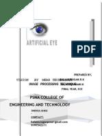 44 Artificial Eye