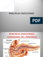 Pancreas Endocrino.pptx