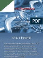 Blotting Techniques1