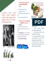 Brosur Osteo