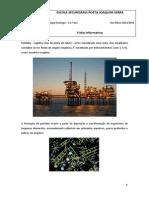 informativa petróleo