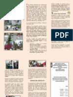 Triptico Proyecto Civil (1)