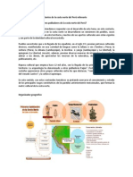 Tema 3-Primeros Habitamntes de La Costa Peru