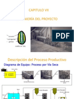 Ingenieria de Proyecyos Goma de Tara