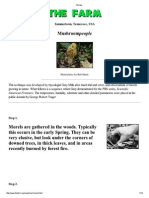 A guide to Morel mushroom cultivation.