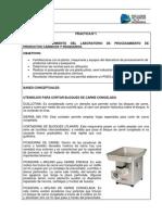 GUIA NUEVO FORMATO.docx