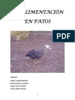 Trabajo Patos.pdf