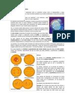 División o Reproducción Celular