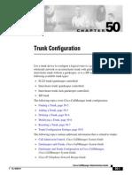Trunk Configuration