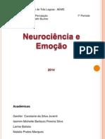Neurociência e Emoção