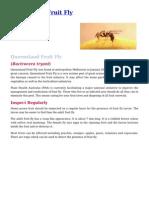 Queensland Fruit Fly Control in your Garden