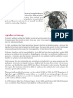 Plant Bacteria Function