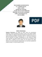 Carlos Andres Castaño.pdf