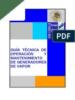 Guía Técnica de Operación y Mantenimiento de Generadores de Vapor