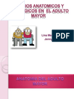 Cambios Anatomomicos y Fisiologicos en El Adulto Mayor