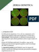 ingenieriagenetica-120315130652-phpapp02