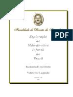 Exploracao Da Mao de Obra Infantil No Brasil