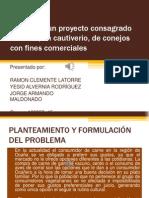 trabajofinaldiseodeproyectos-131213220126-phpapp01