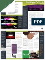 Spotlight On Youth Informational Brochure