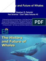history of whales