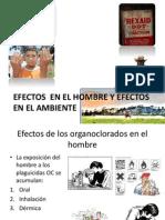 Efectos  EN EL HOMBRE Y EFECTOS EN EL.pptx