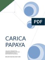 BV1A_Papaye