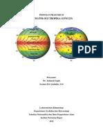 #Pedoman Praktikum Klimatologi Tropika