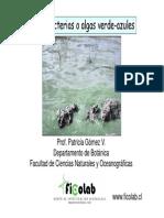 ClaseGralidadesCianobacteriasBioingenieria2014
