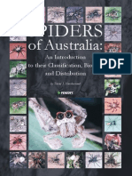 Spiders of Australia