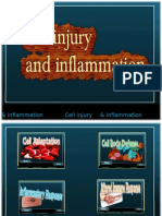 Cell Injury and Inflammation - group 4 SDCA