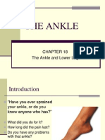Ankle (1).ppt