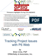 Project Issues with P6 Web