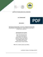 Reporte de Lab Biologia II (2)