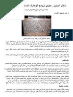 أشكال النجوم.. عنوان لروائع الزخارف الإسلامية ومهارة الفنان