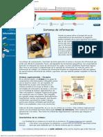 RENa - Cuarta etapa - Inform+ítica - Sistemas de Informaci+¦n