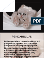 EPITEL I
