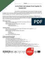 copyof2014onlinephotosynthesisrespirationandecologyproject