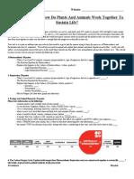 2014onlinephotosynthesisrespirationandecologyproject 1