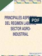PrincipalesaspectosdelRegimenLaboralSectorAgro Industrial