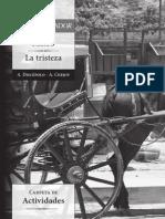 Mateo La Tristeza Act