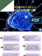 NEUROQUIMICA DE LA BULIMIA.pptx