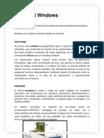 MANUAL IPSA (3).docx