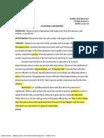 planaria lab report-1 final nick