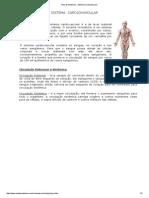 23.4 Aula de Anatomia - Sistema Cardiovascular