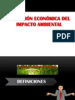 06.- Evaluación Economica Del IA