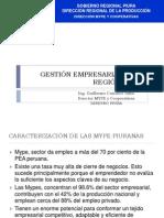 171616926 Gestion Empresarial Mype Region Piura