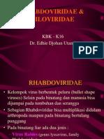 rhabdoviridae