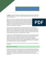 BUDISMO, RELIGION Y FILOSOFIA.doc